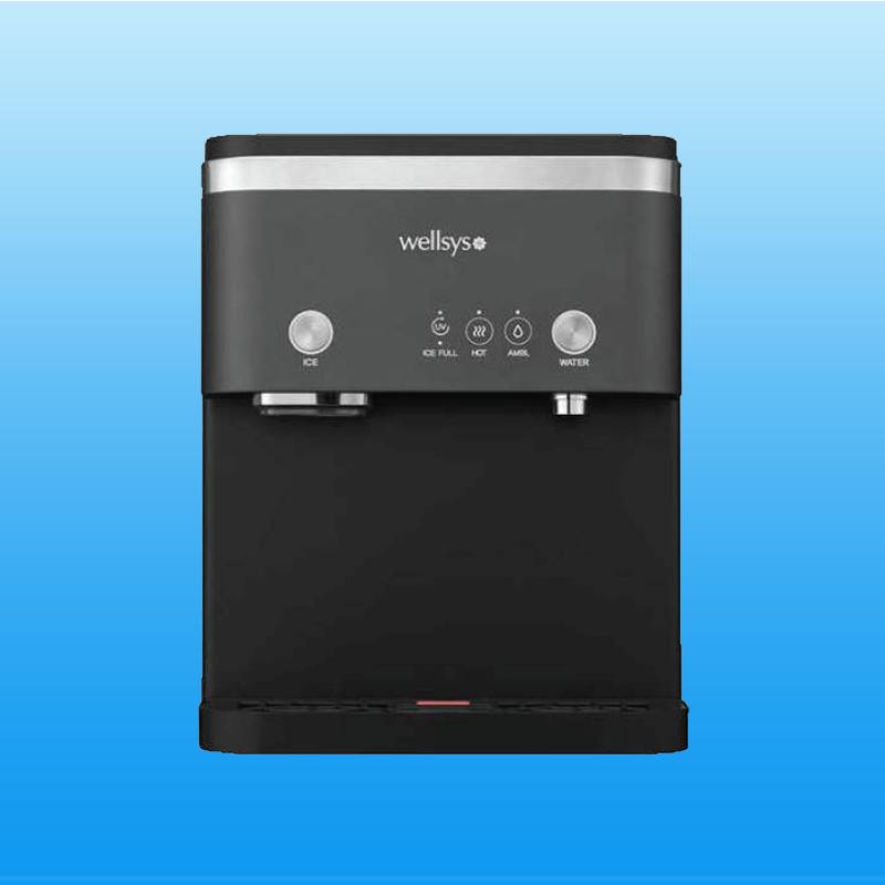 Wellsys 15000 Ice/Water Unit